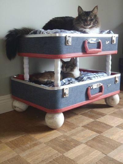 行李箱巧变时尚家居