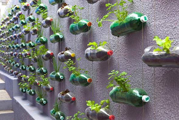 绿色环保创意塑料瓶植物墙