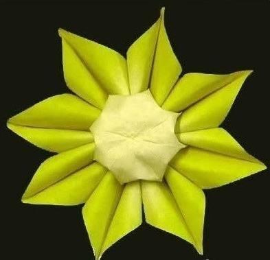 教你如何折向日葵