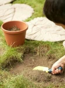 草坪叶子水泥路的制作