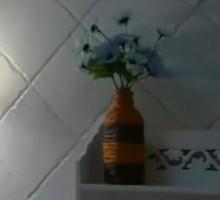 饮料瓶改造成田园花瓶——家有妙招