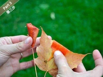 树叶做玫瑰花