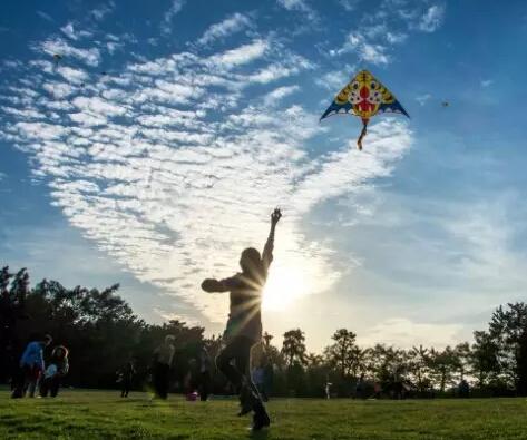 春天到了学习下风筝制作方法,和家人一起去放风筝