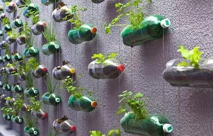 手工制作装在瓶子里的春天