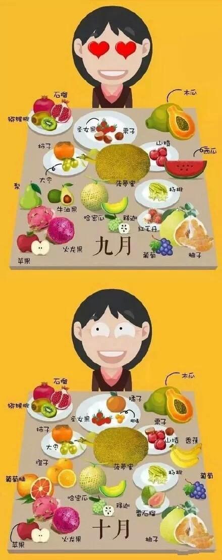 每月当季水果
