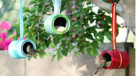 用奶粉罐、油漆桶 为小鸟安一个家