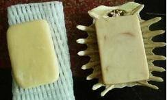 乌龟壳秒变个性肥皂盒