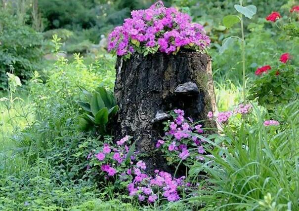 树桩的创意改造